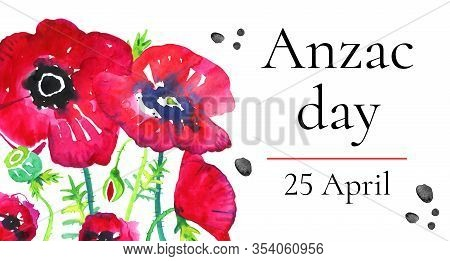 Anzac Day Horizontal Banner Template With Growing Poppies And Title. Hand Drawn Watercolor Illustrat