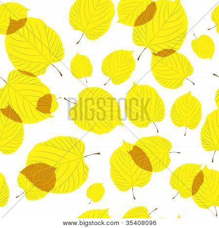 Seamless pattern of autumn leaves on the white background
