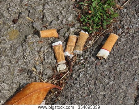 Old Cigarette Butts Littering The Asphalt Covered Ground. Stop Smoking
