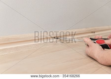 Female Hand Tightens The Screw With A Screwdriver Into The Wall. Repair In The House