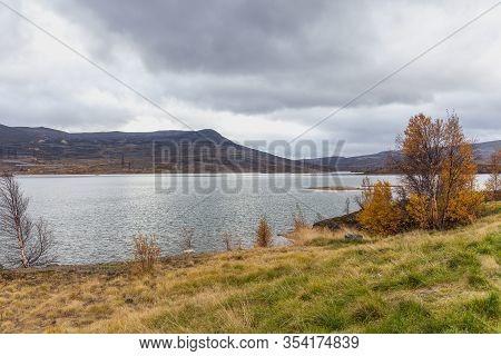 Beautiful Lake, Colorful Yellow Dwarf Birches On The Background Of The Northern Foggy Mountains In A