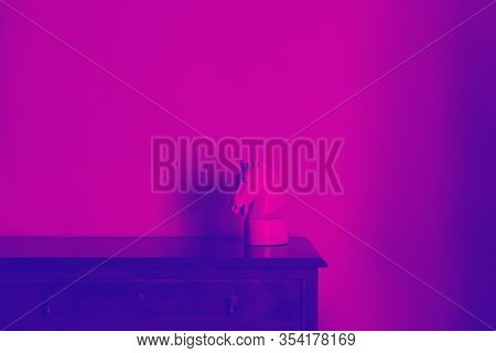 Statue Head Of Horse In Pink Purple Duo Tone Gradient Colors, Abstract Background, Creative Tamplate