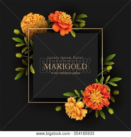 Gold Frame And Beautiful Marigolds Flowers On A Black Background. Retro Card