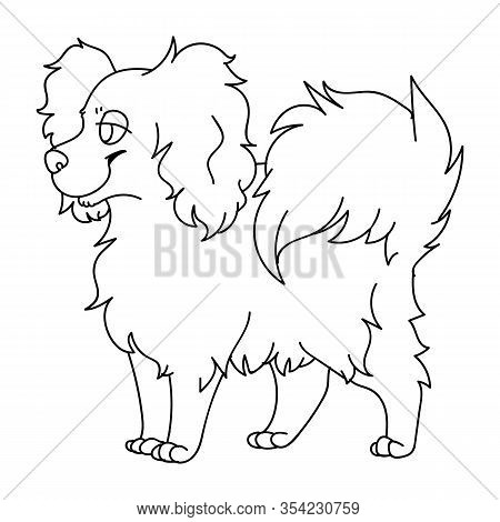 Cute Cartoon Papillon Dog Monochrome Lineart Vector Clipart. Pedigree Kennel Puppy Breed For Dog Lov