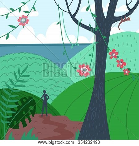 Man Silhouette, Back View On Tropical Mointain Viewpoint. Hiker, Explorer. Beautiful Scenery On The