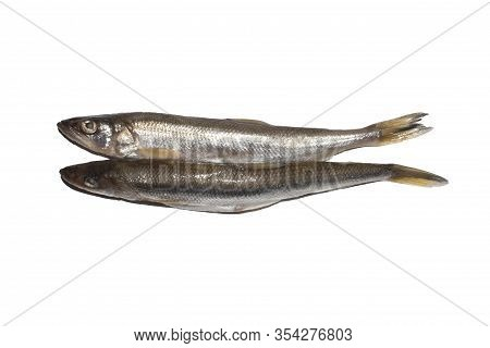 Fresh Smelt.smelt On A White Background.background Of Fresh Smelt Fish.