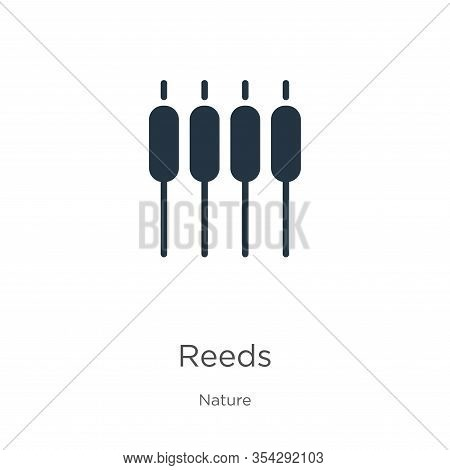 Reeds Icon Vector. Trendy Flat Reeds Icon From Nature Collection Isolated On White Background. Vecto