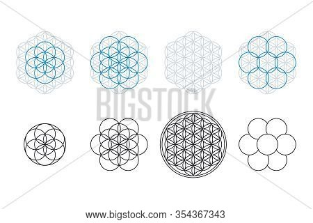 Flower Of Life, Seed And Egg Of Life, Development. Geometrical Figures, Spiritual Symbols And Sacred