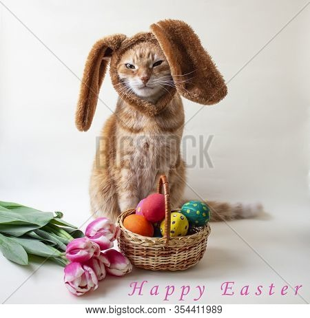 Easter Eggs. Happy Easter Card. Multi-colored Easter Eggs And Rabbit. Easter Eggs On A Light Backgro