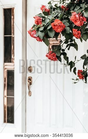 White Entrance Door And Blooming Wild Roses. Spring In The City.