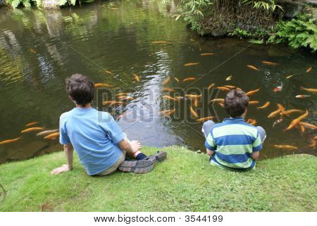 Boys or children sitting at lakeside watching gold fish in a lake. poster
