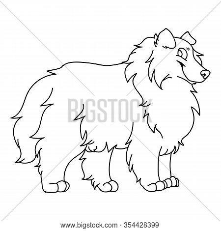 Cute Cartoon Rough Collie Dog Monochrome Vector Clipart. Pedigree Kennel Sheepdog Lineart. Purebred