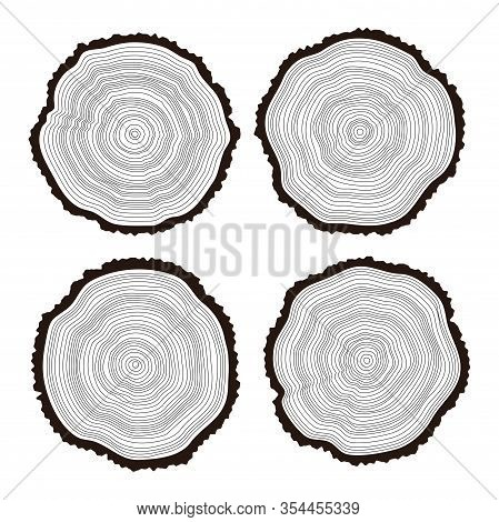 Vector Set Of Black And White Wooden Cuts Of A Tree Log With Concentric Rings And Bark