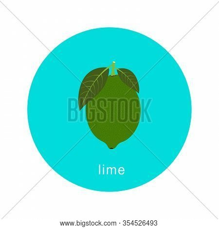 Vector Lime Icon Isolated On White Background.  Flat Blue Circle Icon With Fruit. Healthy Food.