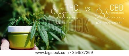 Cbd Thc Chemical Structural Formula, Cannabis Industry, Growing Hemp, Pharmacy Business, Cbd Element