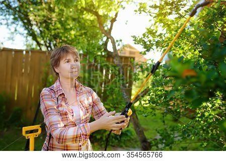 Middle Age Caucasian Woman Sprays Trees Against Pests, Vermin Or Diseases Plants. Gardening.