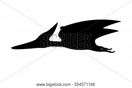 Pterodactyl Silhouette. Vector Illustration Black Silhouette Of A Flying Pterodactyl Dinosaur Isolat