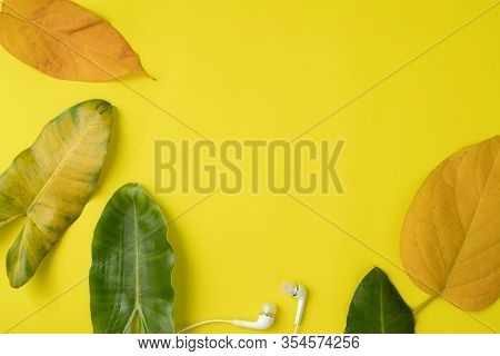 Leaves Frame On Yellow Background, Copy Space.