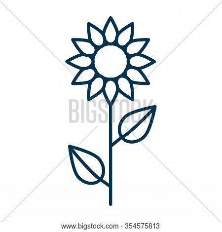 Thin Line Vector Outline Icon Of A Sunflower Flower With Two Leaves Slenderly Standing On A White Ba