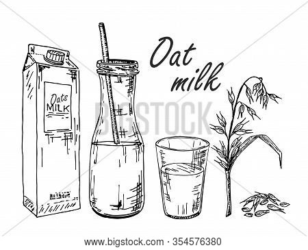 Oat Milk. Vegetable Milk Sketch. Oat Milk In A Bag, In A Bottle, In A Glass. Ears Of Corn And Oats.