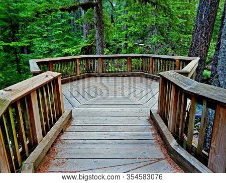 Wilderness Platform - Viewing Platform At Whitehorse Falls On The Clearwater River - North Umpqua Ri