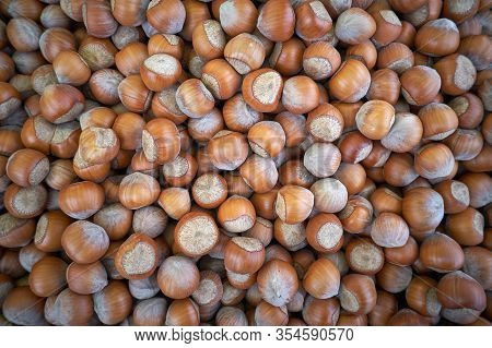 Macro Photo Hazelnut Nuts. Photo Nature Food Hazelnut Nuts In Shell