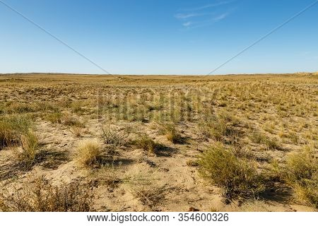 Steppe In Kazakhstan, Dry Grass And Shrub In A Desert Steppe, Landscape