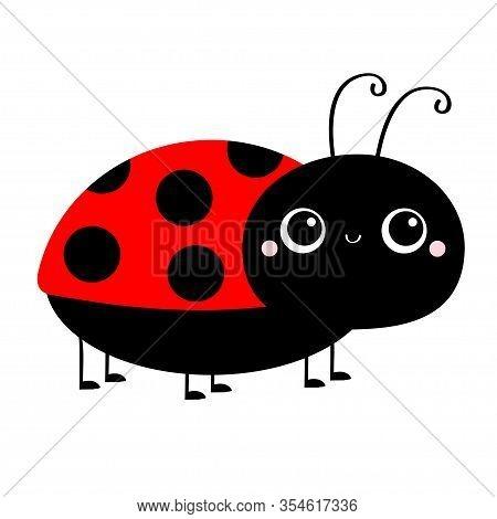 Lady Bug Ladybird Insect Icon Print. Side View. Cute Cartoon Kawaii Funny Baby Character. Big Eyes.