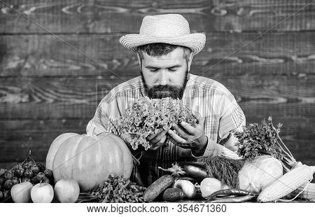 Typical Farmer Guy. Buy Vegetables Local Farm. Farm Market Harvest Festival. Man Mature Bearded Farm