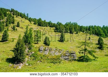 Wonderful View To Beautiful Green Mountainside With Coniferous Trees And Rocks Under Clear Blue Sky.