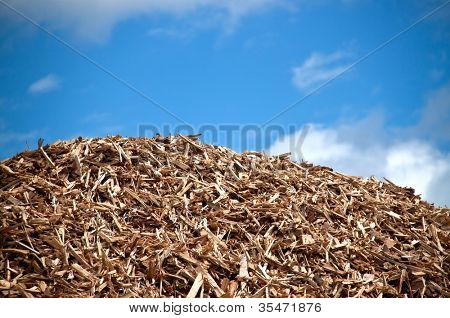 Pile of wood for combustion in biomass power plant
