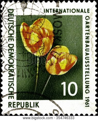 02.11.2020 Divnoe Stavropol Territory Russia Postage Stamp Gdr 1961 Flowers - Garden Exhibition In E