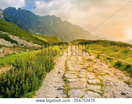 Mountain Trail Lined With Stones Among The Alpine Meadows And Thickets Of Mountain Creeping Pine In