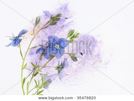 vibrant floral design element poster