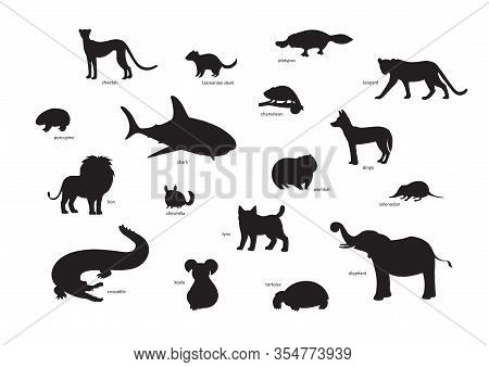 Vector Illustration, Set Of Cartoon Animal Silhouettes. Cheetah, Tasmanian Devil, Platypus, Leopard,