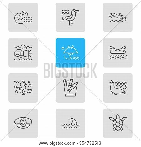 Vector Illustration Of 12 Nautical Icons Line Style. Editable Set Of Pike Fish, Underwater Flashligh
