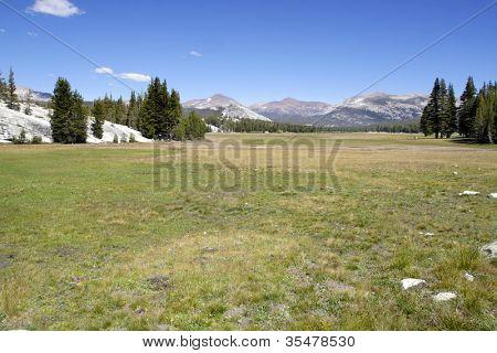 Tuolumne Meadows in Yosemite National Park