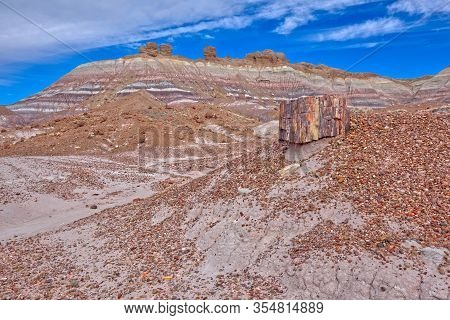 Hoodoos At The Top Of The Blue Mesa Ridge Viewed From The Blue Mesa Trail In Petrified Forest Nation