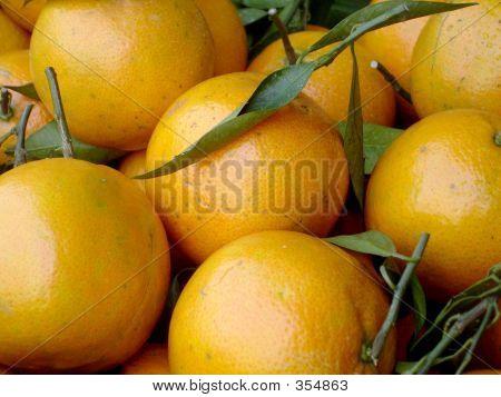 Orange You Glad?