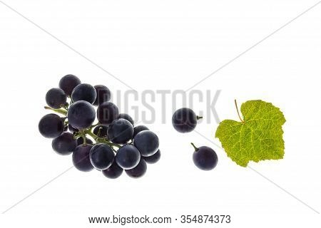 Closeup Of Bunch Of Ripe Merlot Grapes With Leaf Isolated On White Background