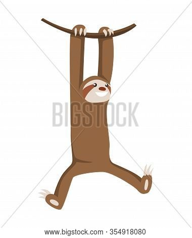 Lets Hang Out. Cute Baby Sloth Hanging On The Tree. Adorable Cartoon Animal Illustration.vector Illu