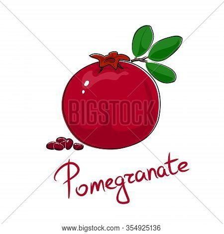 Red Pomegranate And Text Pomegranate , Tropical Fruit Isolated On White Background, Vector Illustrat