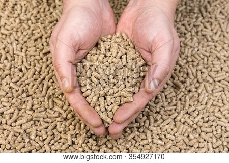 Hands Hold Granules Of Animal Feed. Food For Animals.