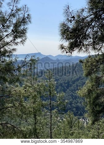 Through The Pine Branches You Can See The Beautiful Nature Of The Region Of Kemer, Turkey, Mountains