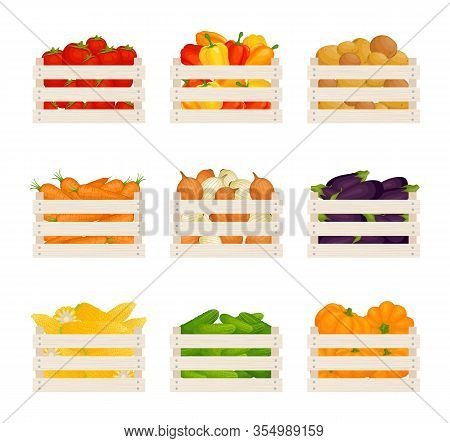 Set Of Wooden Pellets With Various Vegetables. Vector.