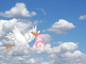 Stork in the clouds delivering a baby girl. poster