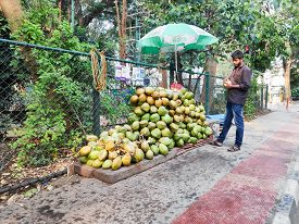 Bangalore, India - May 17, 2019 - A Street Vendor Selling Fresh Coconuts In Bangalore, India.