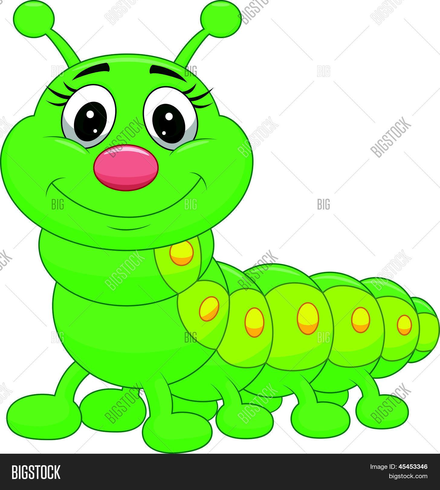 Cute Green Caterpillar Cartoon Vector  for Clipart Cute Caterpillar  75tgx