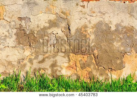 Grass Infront Of Scratched And Cracked Wall