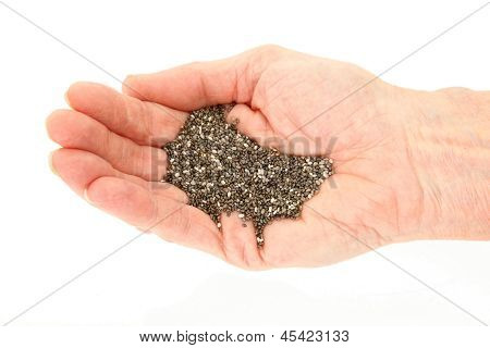Organic Chia Seeds In Hand